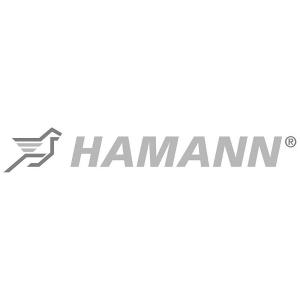 hamann_logo